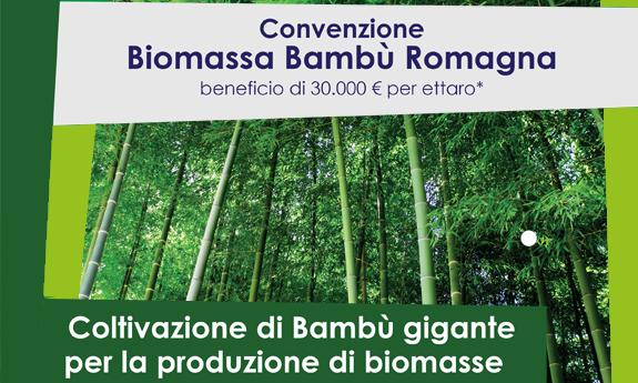 Convenzione biomassa romagna