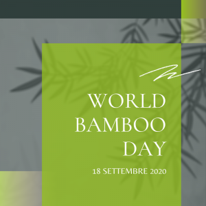 WORLD BAMBOO DAY 800