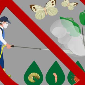 no-pesticidi-768x357